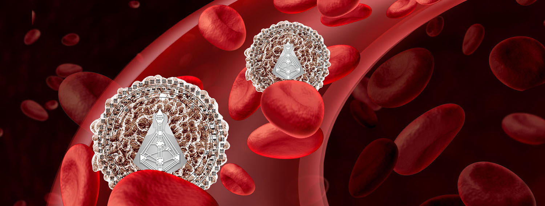 HDS Immunsystem