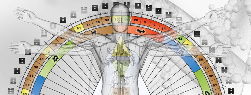 Rave Anatomie › Das Human Design System